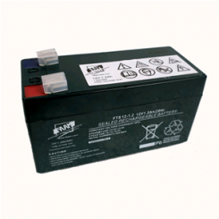 FAAM 12 V 1.2 Ah Battery