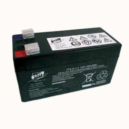 FAAM 12 V 1.2 Ah Battery