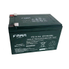 FAAM 12 V 12 Ah Battery