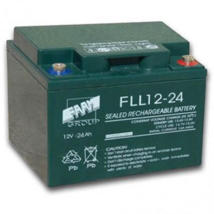 FAAM 12 V 24 Ah Battery