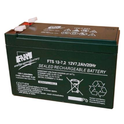 FAAM 12 V 7 Ah Battery